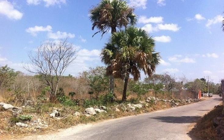 Foto de terreno comercial en venta en  , motul de carrillo puerto centro, motul, yucatán, 1051785 No. 03
