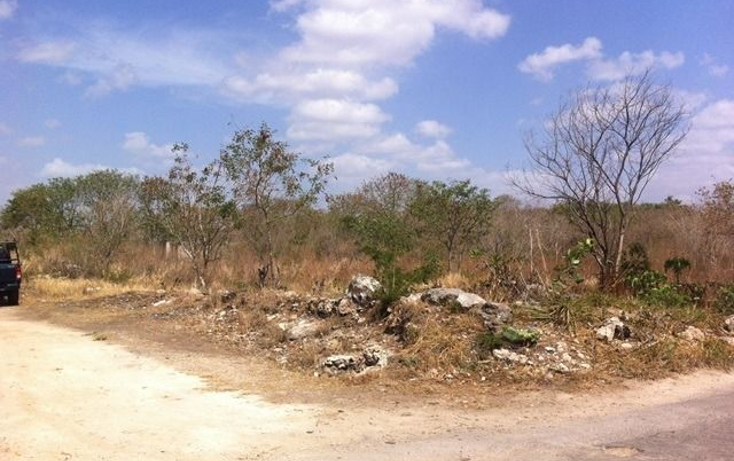 Foto de terreno comercial en venta en  , motul de carrillo puerto centro, motul, yucatán, 1051785 No. 04