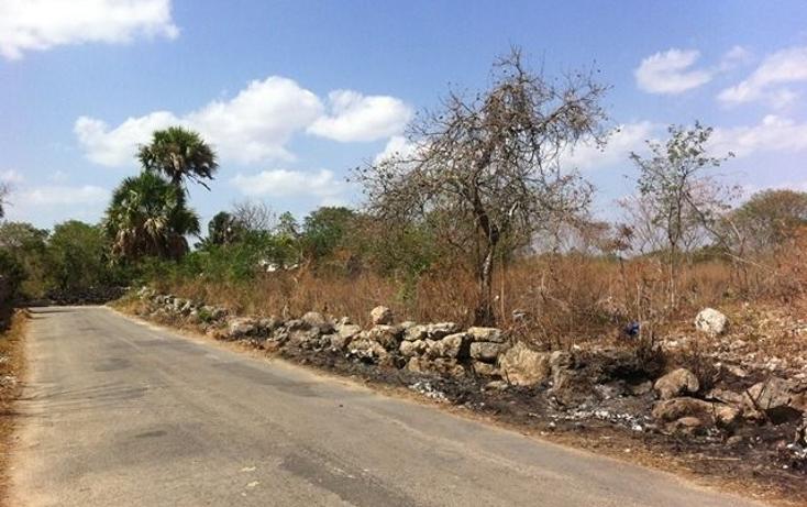 Foto de terreno comercial en venta en  , motul de carrillo puerto centro, motul, yucatán, 1051785 No. 06