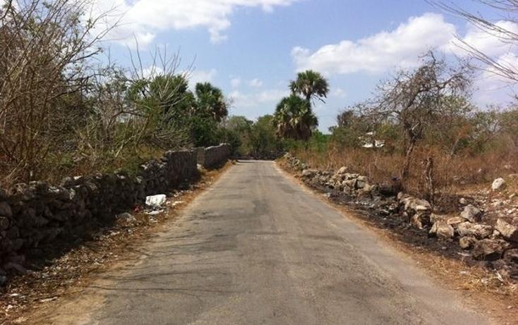 Foto de terreno comercial en venta en  , motul de carrillo puerto centro, motul, yucatán, 1051785 No. 08