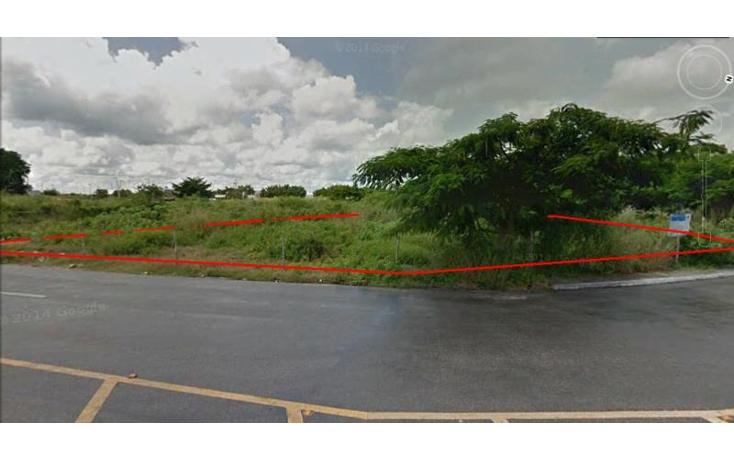 Foto de terreno comercial en venta en  , motul de carrillo puerto centro, motul, yucat?n, 1097495 No. 04