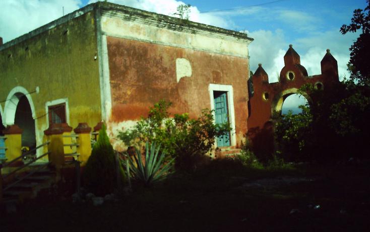 Foto de rancho en venta en  , motul de carrillo puerto centro, motul, yucatán, 1177703 No. 03