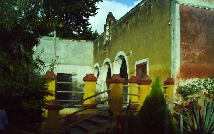 Foto de rancho en venta en  , motul de carrillo puerto centro, motul, yucatán, 1177703 No. 04