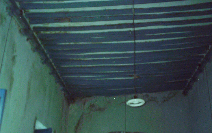 Foto de rancho en venta en  , motul de carrillo puerto centro, motul, yucatán, 1177703 No. 11