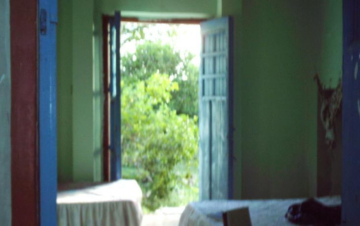 Foto de rancho en venta en  , motul de carrillo puerto centro, motul, yucatán, 1177703 No. 13