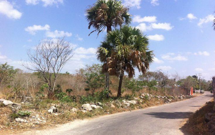 Foto de terreno comercial en venta en, motul de carrillo puerto centro, motul, yucatán, 1399613 no 04