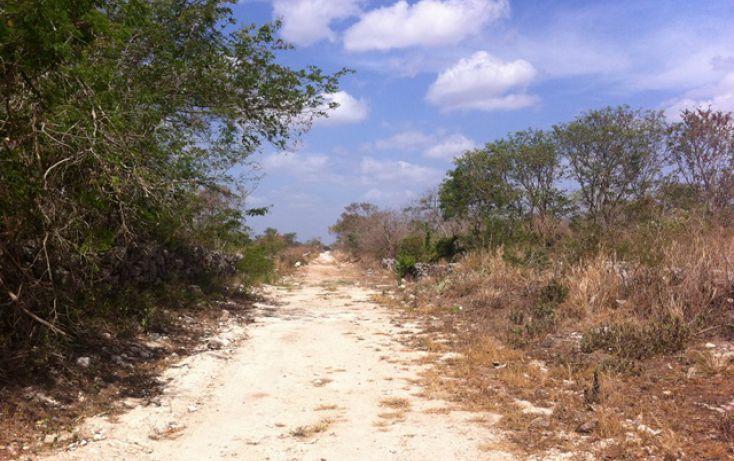 Foto de terreno comercial en venta en, motul de carrillo puerto centro, motul, yucatán, 1399613 no 06