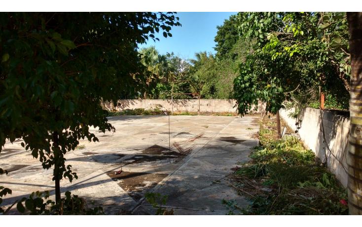 Foto de casa en venta en  , motul de carrillo puerto centro, motul, yucat?n, 1661466 No. 11