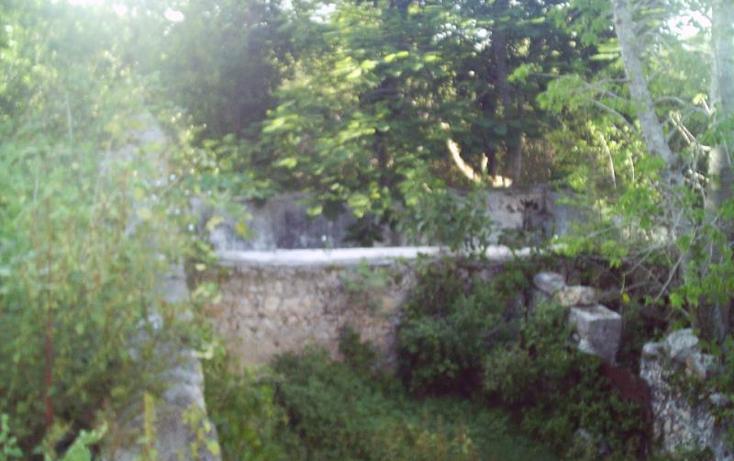 Foto de rancho en venta en  , motul de carrillo puerto centro, motul, yucatán, 1774122 No. 10