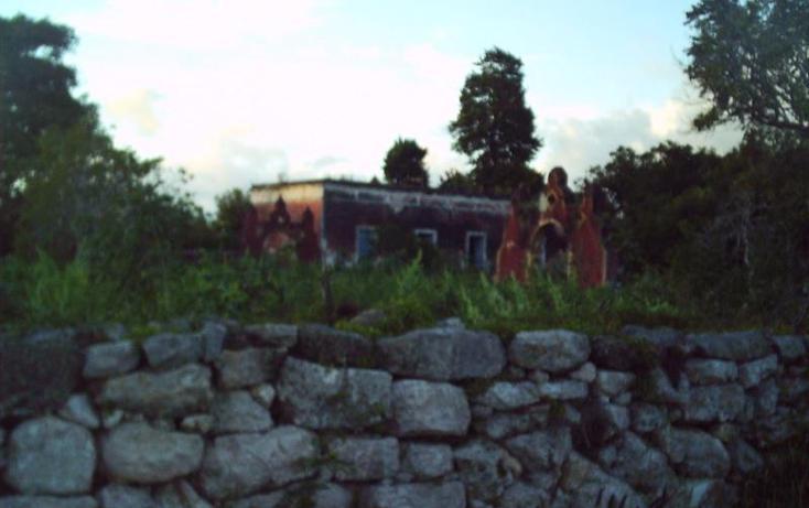 Foto de rancho en venta en  , motul de carrillo puerto centro, motul, yucatán, 1774122 No. 15