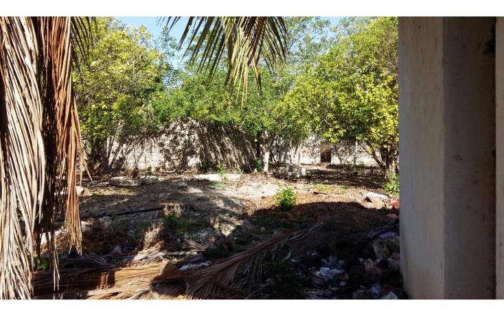 Foto de casa en venta en  , motul de carrillo puerto centro, motul, yucat?n, 2003746 No. 08