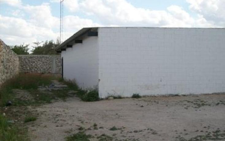 Foto de nave industrial en renta en  , muelle y puerto de altura, progreso, yucatán, 2013476 No. 08