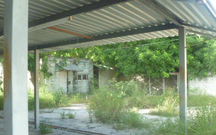 Foto de local en renta en  , mulchechen, kanasín, yucatán, 1420267 No. 05