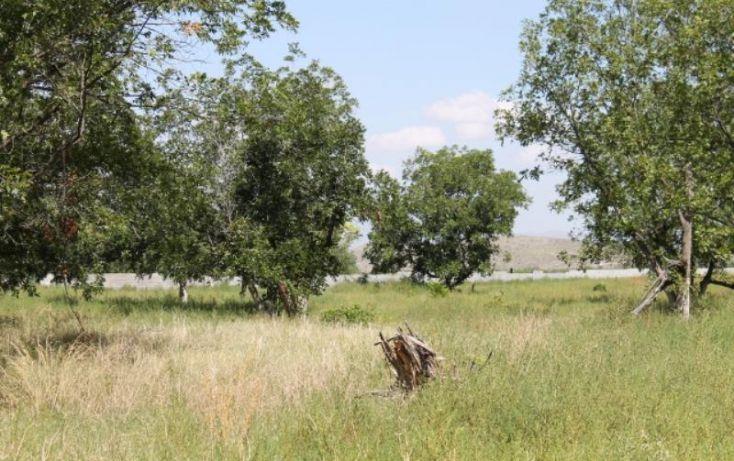 Foto de terreno comercial en venta en na, ejidal, arteaga, coahuila de zaragoza, 1341979 no 03