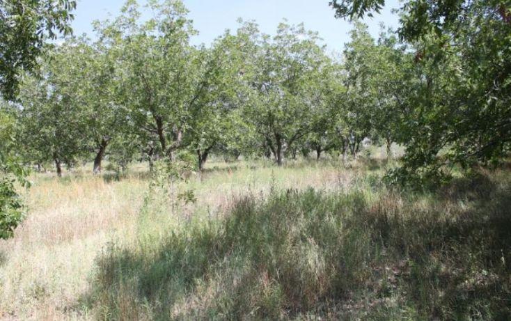 Foto de terreno comercial en venta en na, ejidal, arteaga, coahuila de zaragoza, 1341979 no 05