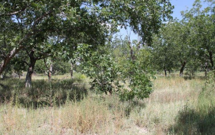 Foto de terreno comercial en venta en na, ejidal, arteaga, coahuila de zaragoza, 1341979 no 06