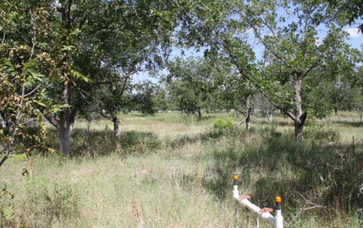 Foto de terreno comercial en venta en na, ejidal, arteaga, coahuila de zaragoza, 1341979 no 07