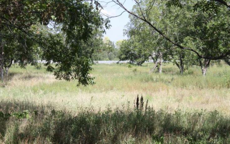 Foto de terreno comercial en venta en na, ejidal, arteaga, coahuila de zaragoza, 1341979 no 08