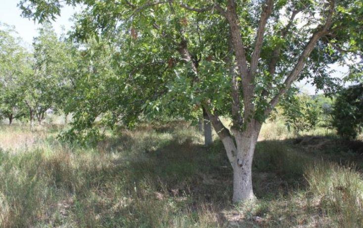 Foto de terreno comercial en venta en na, ejidal, arteaga, coahuila de zaragoza, 1341979 no 10