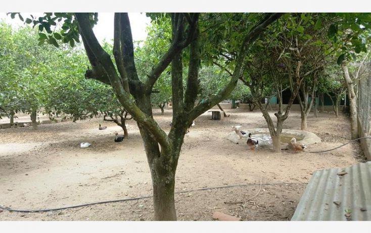 Foto de rancho en venta en na, espinal de morelos, ocozocoautla de espinosa, chiapas, 1951666 no 19