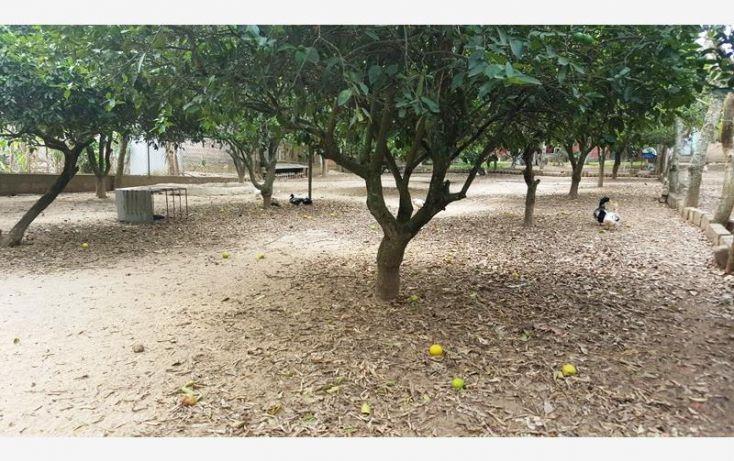 Foto de rancho en venta en na, espinal de morelos, ocozocoautla de espinosa, chiapas, 1951666 no 20