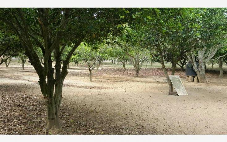 Foto de rancho en venta en na, espinal de morelos, ocozocoautla de espinosa, chiapas, 1951666 no 24