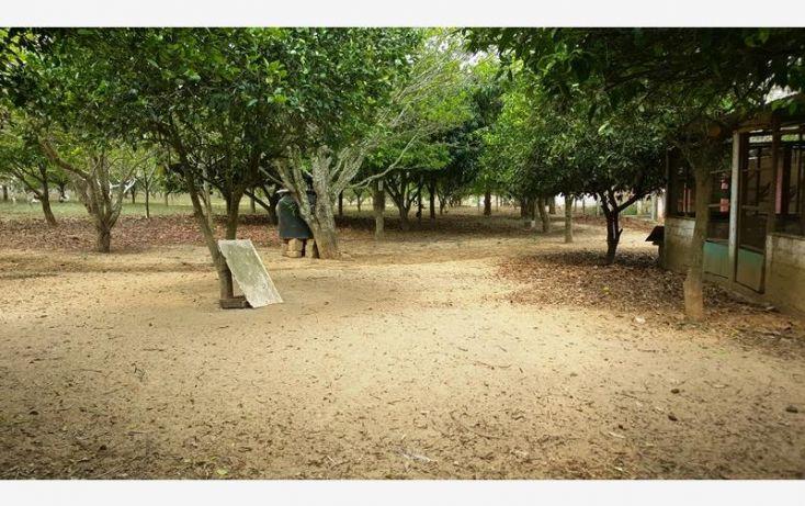 Foto de rancho en venta en na, espinal de morelos, ocozocoautla de espinosa, chiapas, 1951666 no 25