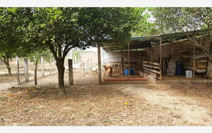 Foto de rancho en venta en na, espinal de morelos, ocozocoautla de espinosa, chiapas, 1951666 no 32