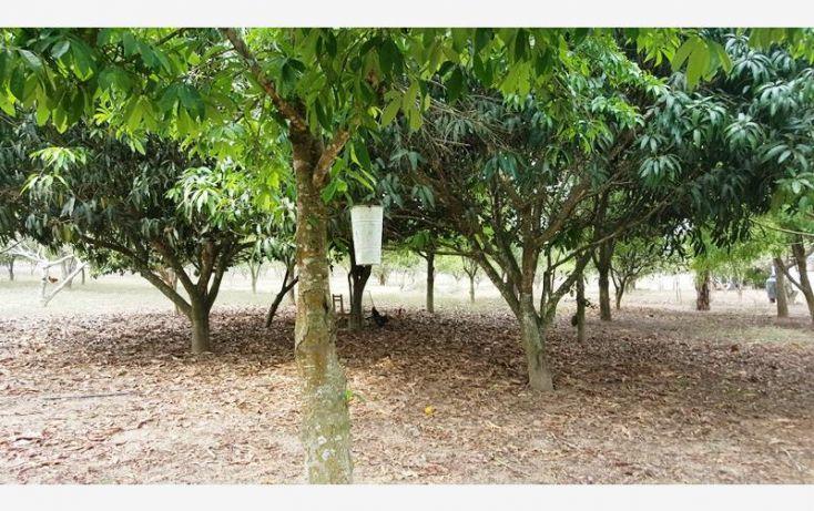 Foto de rancho en venta en na, espinal de morelos, ocozocoautla de espinosa, chiapas, 1951666 no 34