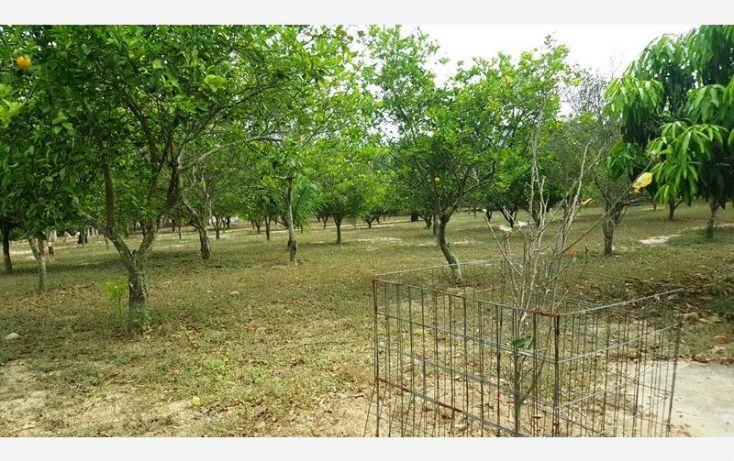 Foto de rancho en venta en na, espinal de morelos, ocozocoautla de espinosa, chiapas, 1951666 no 35