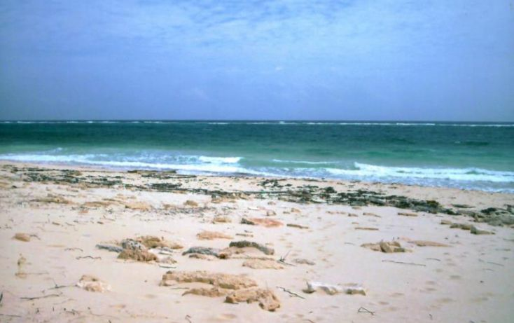 Foto de terreno habitacional en venta en na, laguna kana, felipe carrillo puerto, quintana roo, 1481869 no 03