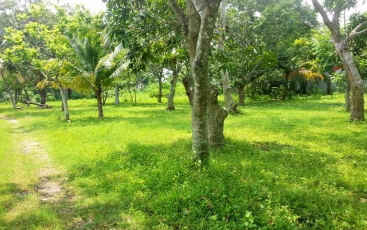 Foto de terreno habitacional en venta en  , nacajuca, nacajuca, tabasco, 1420865 No. 01