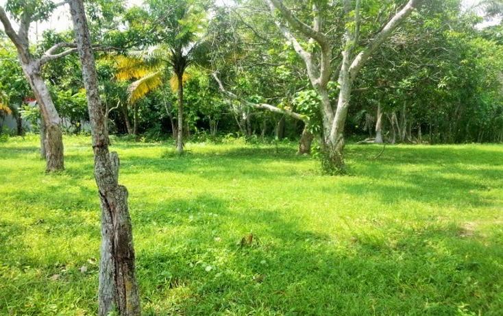 Foto de terreno habitacional en venta en  , nacajuca, nacajuca, tabasco, 1420865 No. 07