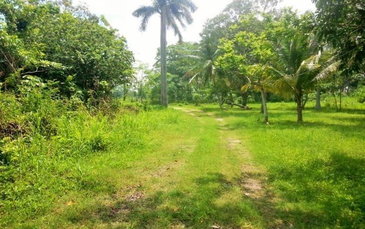 Foto de terreno habitacional en venta en  , nacajuca, nacajuca, tabasco, 2734762 No. 05