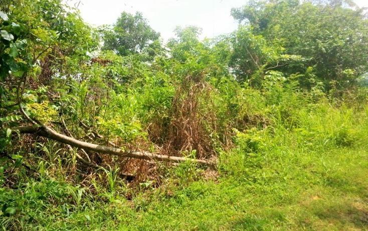 Foto de terreno habitacional en venta en  , nacajuca, nacajuca, tabasco, 2734762 No. 06