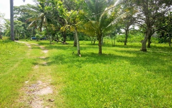 Foto de terreno habitacional en venta en  , nacajuca, nacajuca, tabasco, 2734762 No. 09