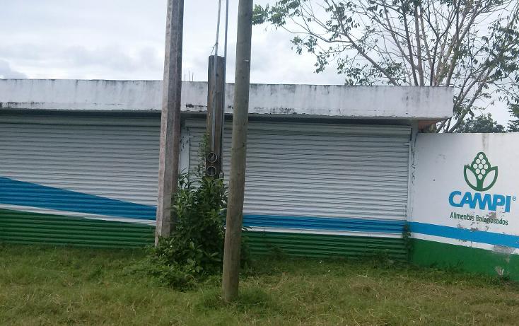 Foto de local en renta en  , naranjos centro, naranjos amatlán, veracruz de ignacio de la llave, 1073095 No. 02