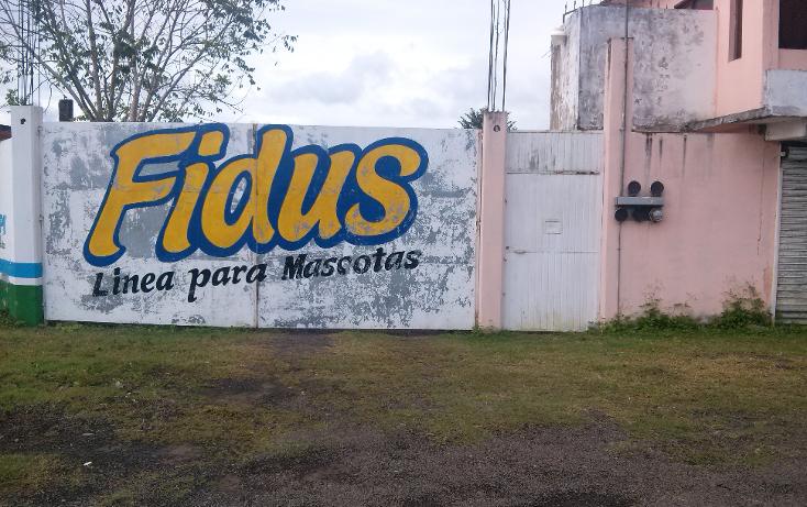Foto de local en renta en  , naranjos centro, naranjos amatlán, veracruz de ignacio de la llave, 1073095 No. 04