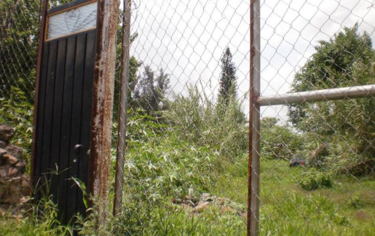 Foto de terreno habitacional en venta en, narciso mendoza, cuautla, morelos, 1238649 no 05