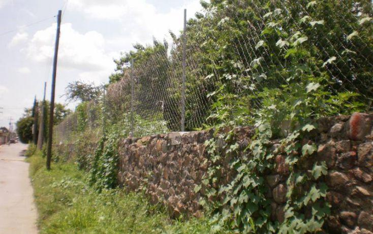 Foto de terreno habitacional en venta en, narciso mendoza, cuautla, morelos, 1238649 no 06