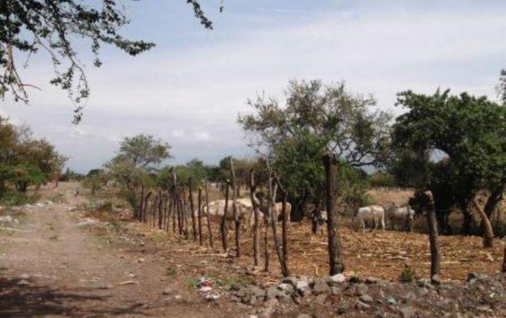 Foto de terreno habitacional en venta en, narciso mendoza, cuautla, morelos, 1574562 no 05