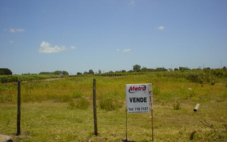Foto de terreno comercial en venta en  , navolato centro, navolato, sinaloa, 1073687 No. 03