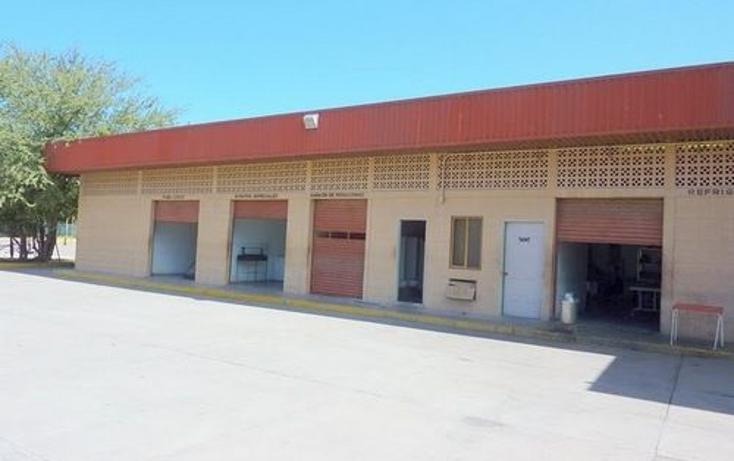 Foto de nave industrial en venta en  , navolato centro, navolato, sinaloa, 1091089 No. 02