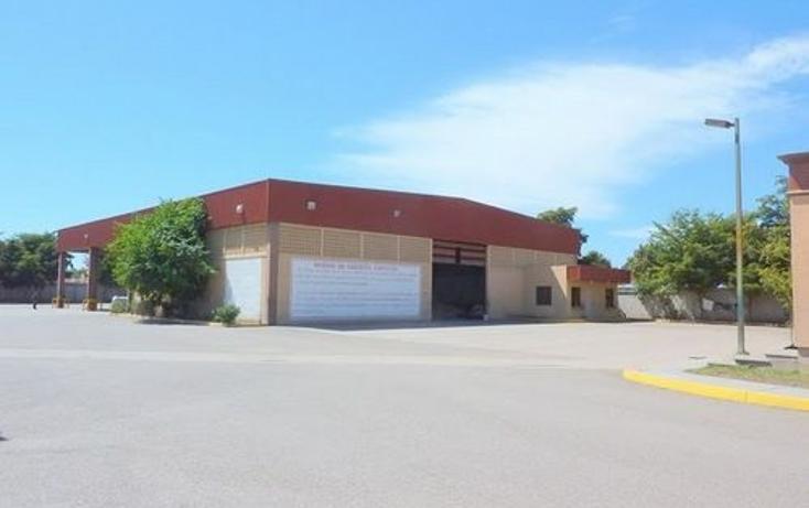 Foto de nave industrial en venta en  , navolato centro, navolato, sinaloa, 1091089 No. 04
