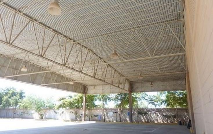 Foto de nave industrial en venta en  , navolato centro, navolato, sinaloa, 1091089 No. 06