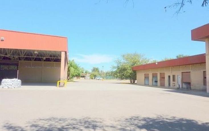 Foto de nave industrial en venta en  , navolato centro, navolato, sinaloa, 1091089 No. 07
