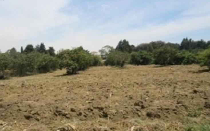 Foto de rancho en venta en  , nepantla de sor juana in?s, tepetlixpa, m?xico, 1043741 No. 01