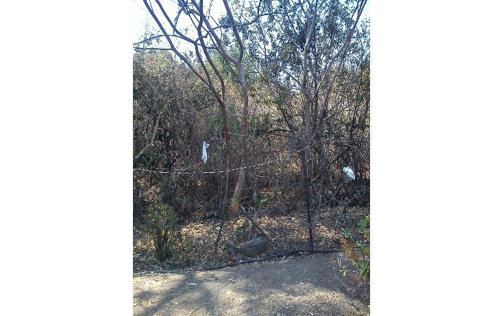 Foto de terreno habitacional en venta en  , nepantla de sor juana inés, tepetlixpa, méxico, 1986229 No. 01
