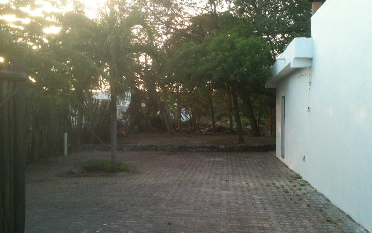 Foto de terreno comercial en renta en  , nicte-ha, solidaridad, quintana roo, 1272179 No. 04