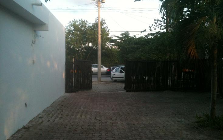 Foto de terreno comercial en renta en  , nicte-ha, solidaridad, quintana roo, 1272179 No. 07